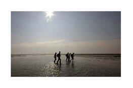 Wandeling met boswachter over De Schorren - Texel