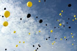 """Mogelijk ballonnenverbod op Texel: """"Ze zijn rampzalig voor het milieu"""""""