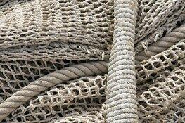 Vissers morgen in actie tegen Europees verbod op pulsvisserij
