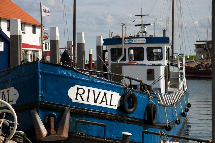 Sportvissen op Texel met De Rival