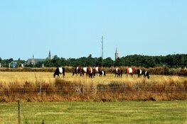 """Historische 'Goede Vrijdag' voor toerisme Texel: """"Nog nooit zo weinig gasten"""""""