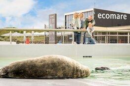 Ecomare en Museum Kaap Skil gaan weer open