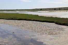 Water in natuurgebied Wagenjot op Texel gepompt tegen de droogte