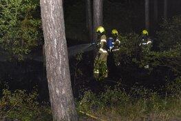 Brand in duingebied De Koog, 500 vierkante meter verwoest