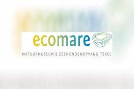Dierendag bij Ecomare