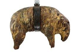 Gouden schaap naar Museum Kaap Skil